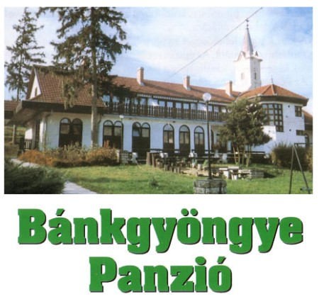 http://www.neet.hu/images/bankgyongye_kep.jpg
