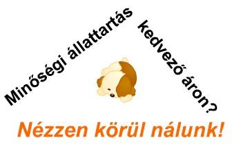 Buksi állateledel Csepel