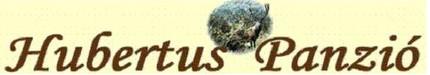 Panzió és étterem Mátészalkán, vadászat Mátészalkán, horgászási lehetőség Mátészalkán, lovaglás Mátészalkán