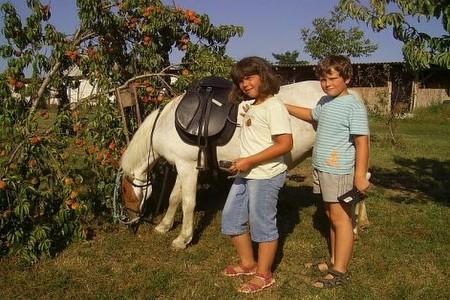 állatsimogatás Császártöltés - Kiscsalán, Vendégház Császártöltés - Kiscsalán, Bemutató gazdaság Császártöltés - Kiscsalán, borkóstoló Császártöltés - Kiscsalán